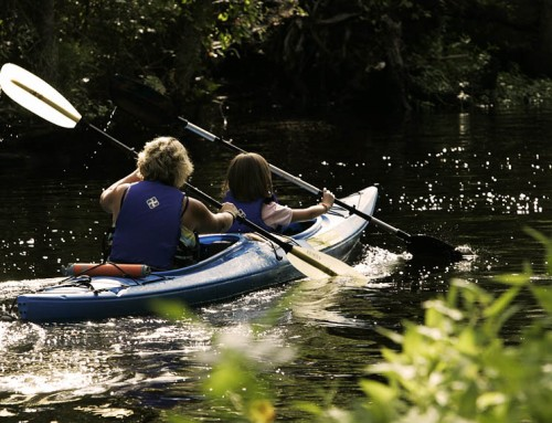 4 Things To Keep In Mind When Kayaking In Lover's Key