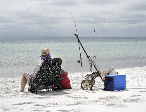 Go Fishing at Lovers Key Beach