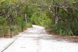Beautiful Florida Estuary Trail