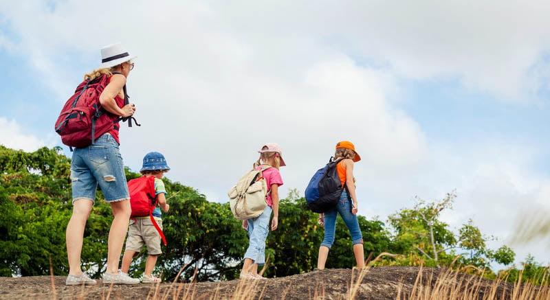 Fun and Educational Field Trips with Lovers Key Adventures