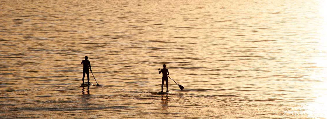 Up a Creek With a Paddle – SUP?