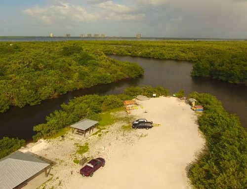 5 Things You Should Pack for a Canoe or Kayak Trip in Lovers Key State Park