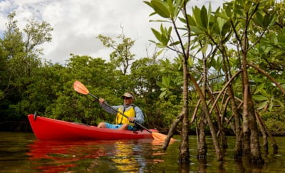 Renting A Kayak? 4 Questions To Ask To Fill Your Kayak Rental Experience With Adventure