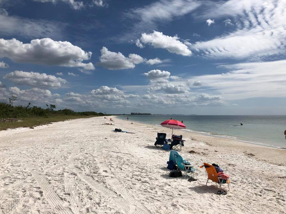 Dig Into the Natural World at Lovers Key, Florida!