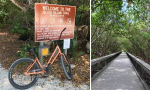 Why Should You Start Cycling by the Beach?