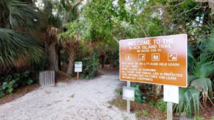 Follow These Tips When Bringing Your Dog to Lovers Key Park
