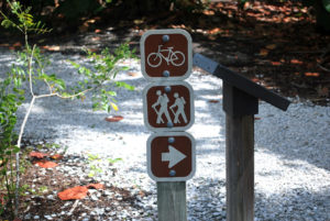 Hiking and Biking At Lovers Key: The Best Time To Go