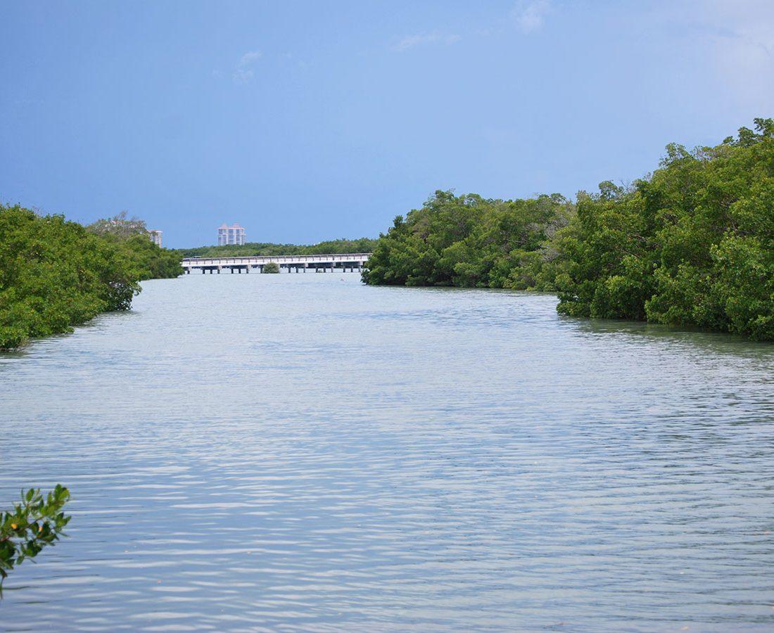 Estero Bay Scenery