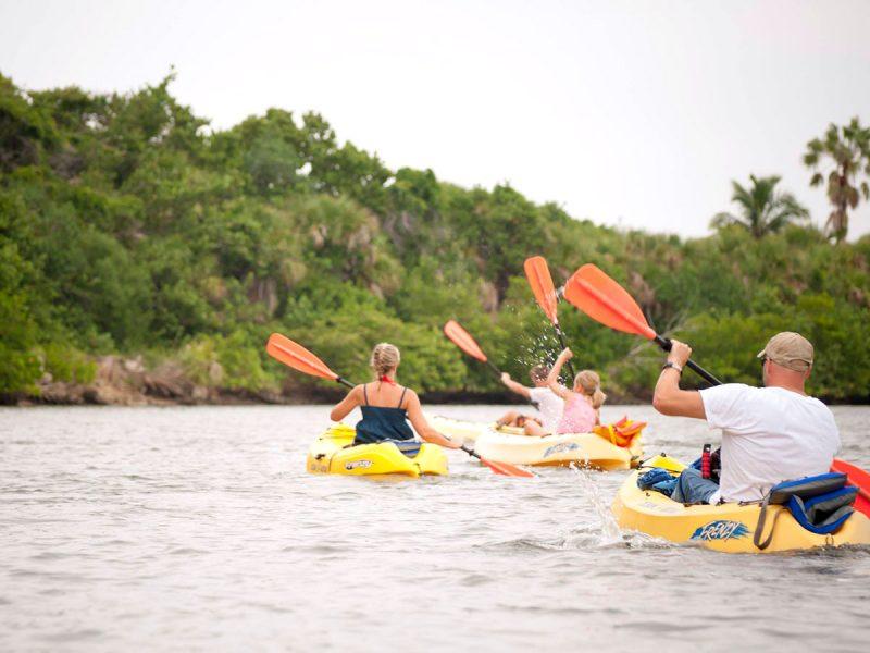 Family Kayak Tours Florida