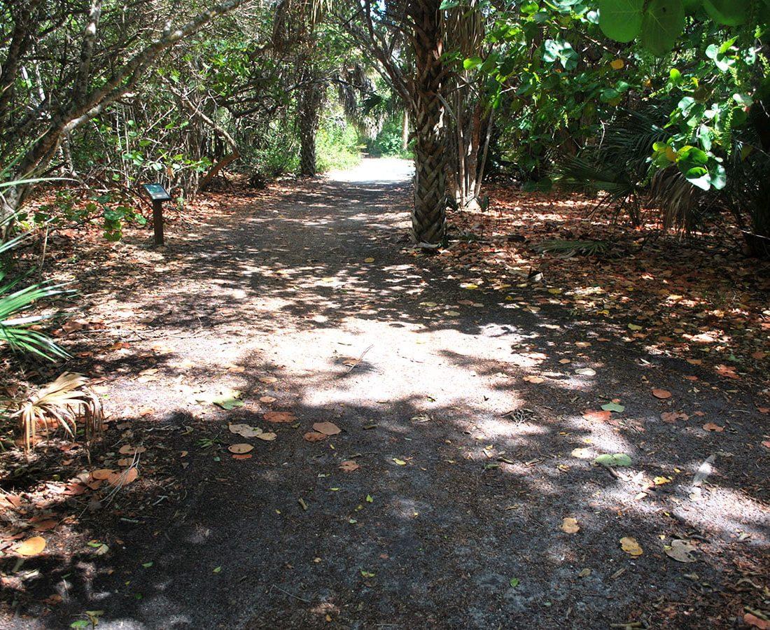 Hiking and Biking Trails in Florida