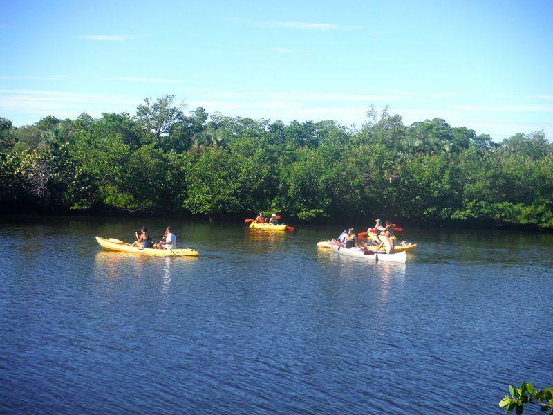 Kayak Tours Lovers Key