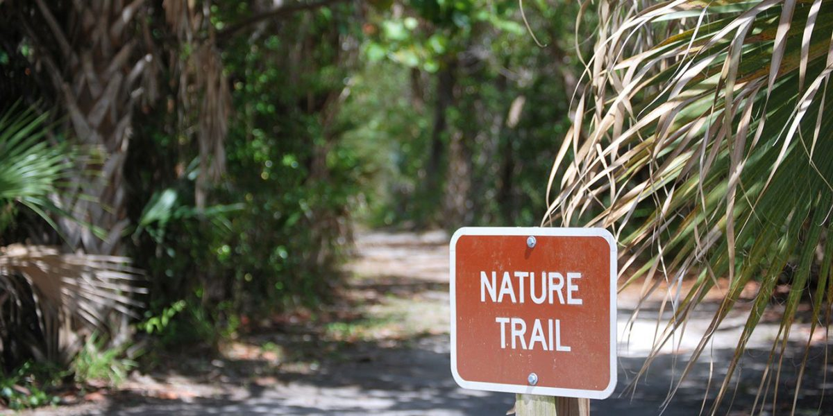 Explore Florida's Beauty: Hike Trails in Lovers Key State Park