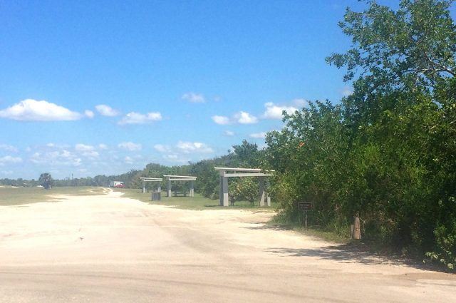 Lovers Key Picnic and Parking East of Estero Blvd