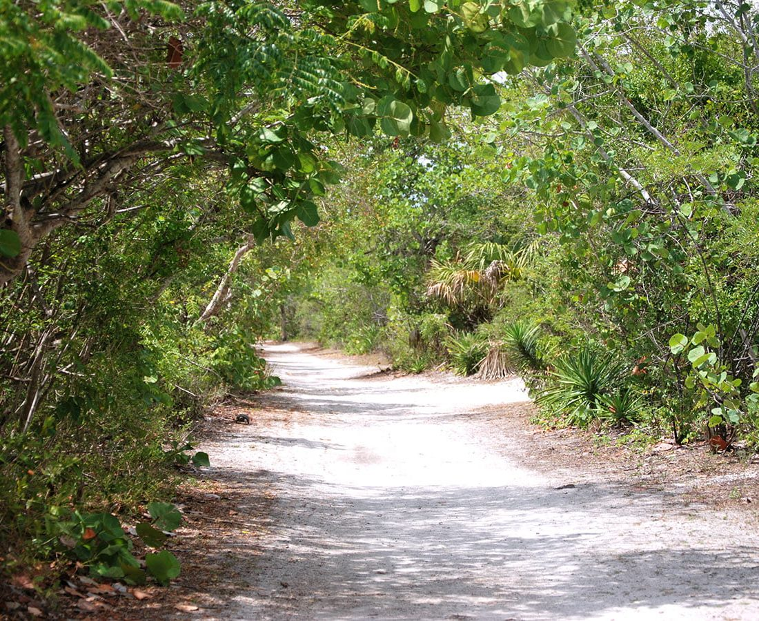 Must See Florida State Parks
