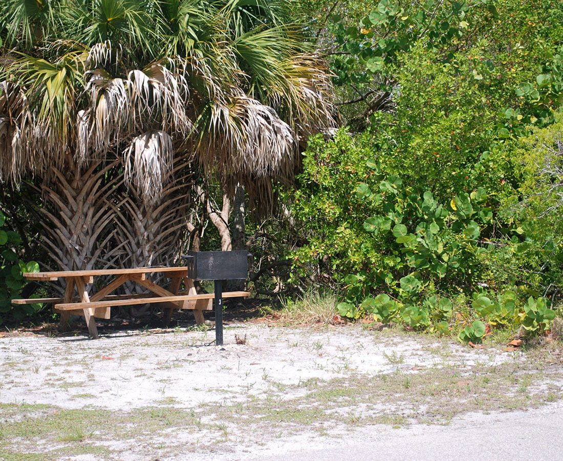 Picnic Areas Fort Myers Beach