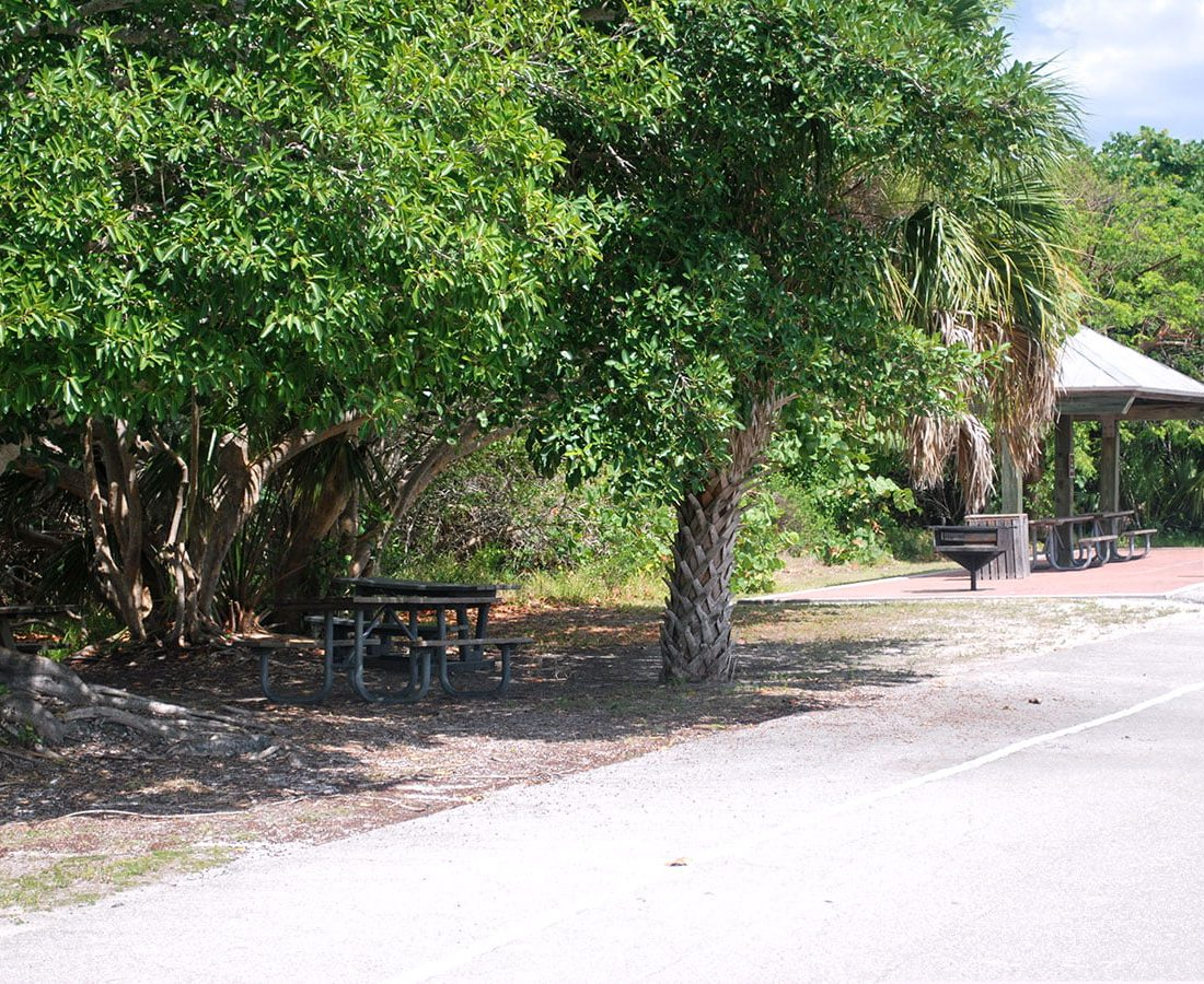 Picnic Areas in Southwest Florida