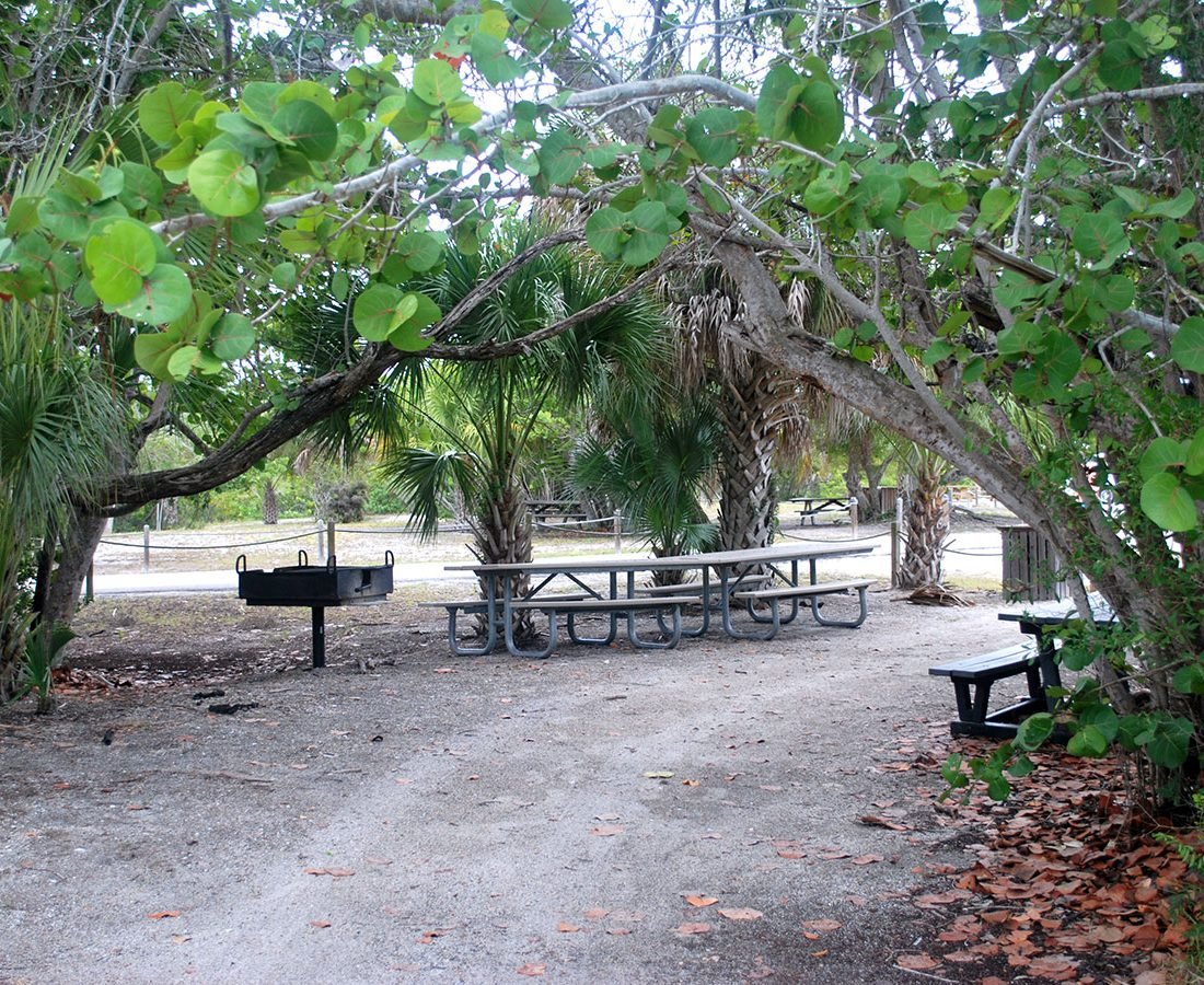 Picnic Barbeque in Lovers Key