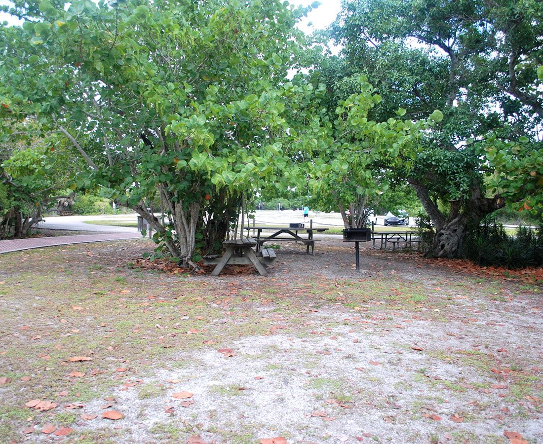 Picnic and BBQ Spots in Lovers Key