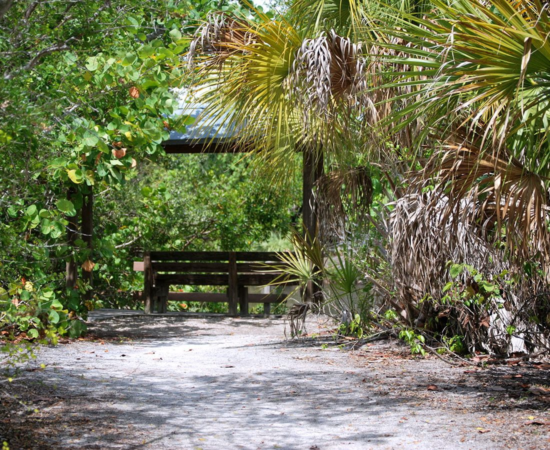 Scenic Outlook at Lovers Key State Park