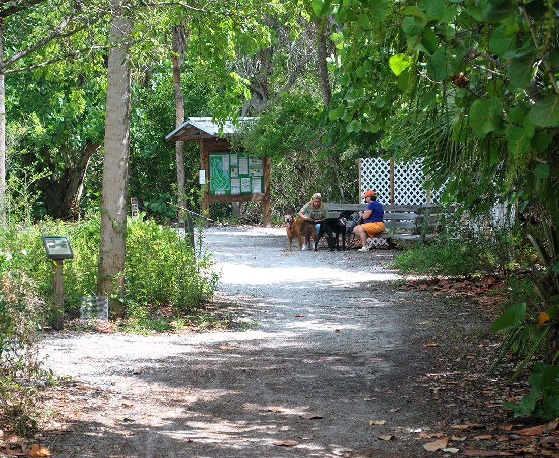 Walk Your Dog Fort Myers Beach Trails