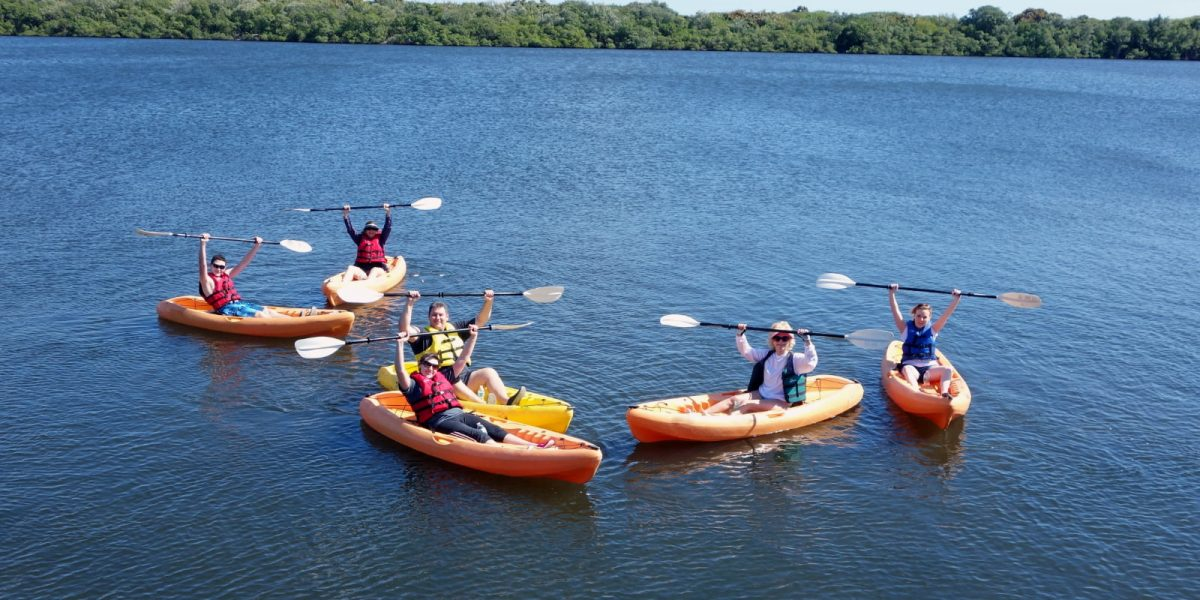 What to Expect From Guided Kayak Tours at Lovers Key State Park