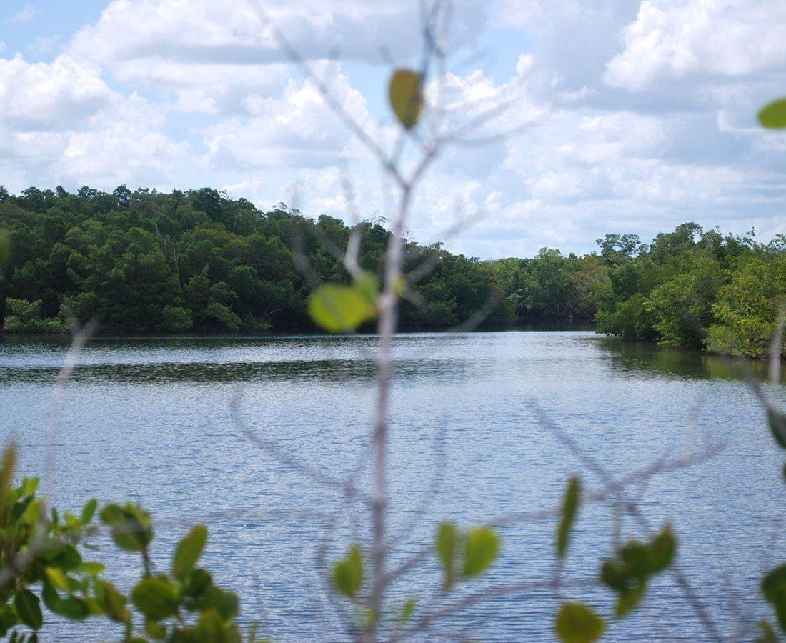 kayaking-waterways-of-lovers-key